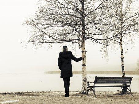Woman, Lake, Bench, Bare, Bare Trees, Seat, Nature