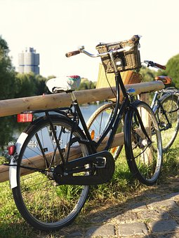 Bike, Park, Bicycle, Cycling, Cycle, Road, Cyclist