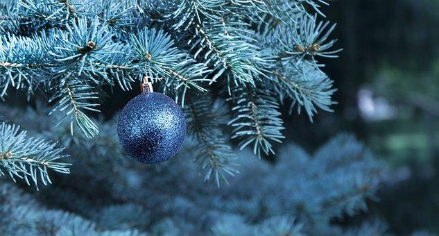 Christmas, Tree, Bauble, Ball, Christmas Ball