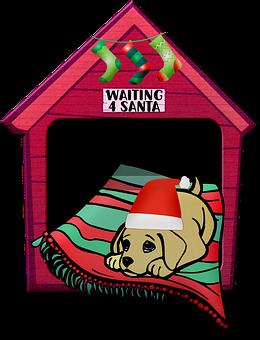 Dog, Christmas, Dog House, Santa Hat, Stockings, Xmas