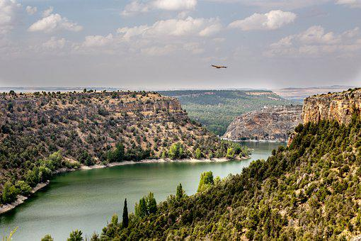 Duratón, River, Canyon, Bird, Flying Bird, Panorama