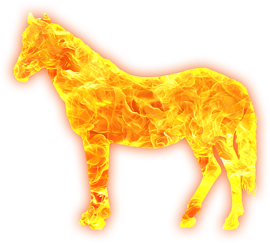 Horse, Pony, Equine, Equestrian, Flames, Fire, Golden