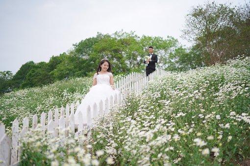 Wedding, Bride And Groom, Field Of Flowers, Flowers