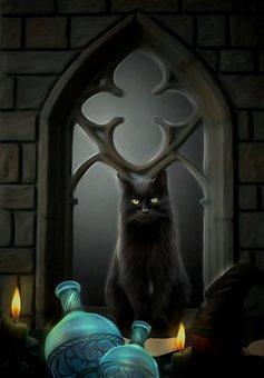 Cat, Feline, Potions, Windowsill, Black, Candle, Light