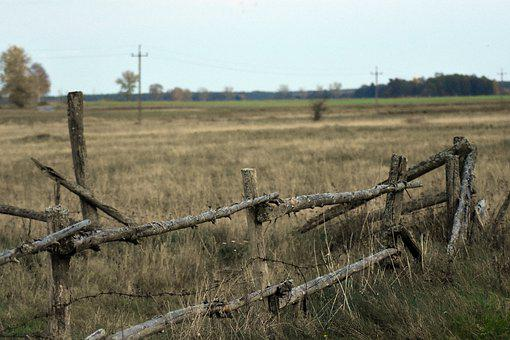 Field, Meadow, Fence, Fencing, Grass, Trees, Village