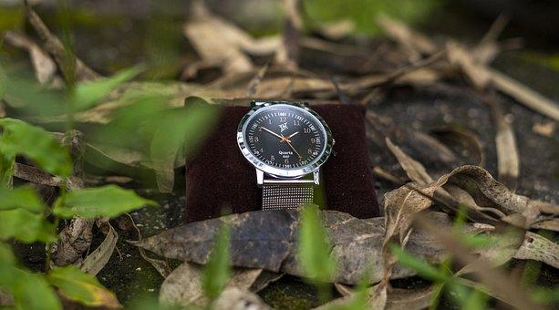 Wristwatch, Accessory, Fashion, Luxury, Jewelry, Watch