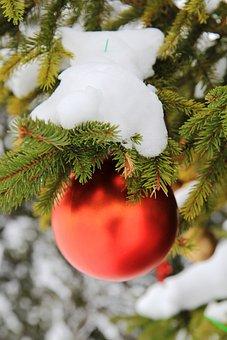 Christmas Tree, Snow, Bauble, Fir Tree, Christmas Time