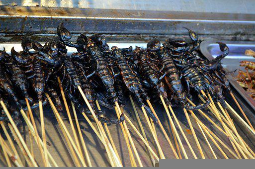 Bugs, Insect, Exotic, Meat, Spicy, Street, Food