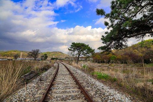 Railroad Tracks, Train Tracks, Train Path, Trees
