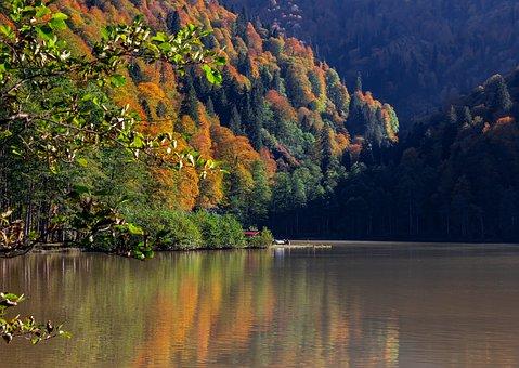Lake, Autumn, Trees, Leaves, Foliage, Autumn Leaves