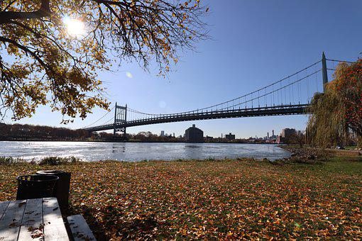 Bridge, Crossing, Structure, Park, Bench, River, Trees