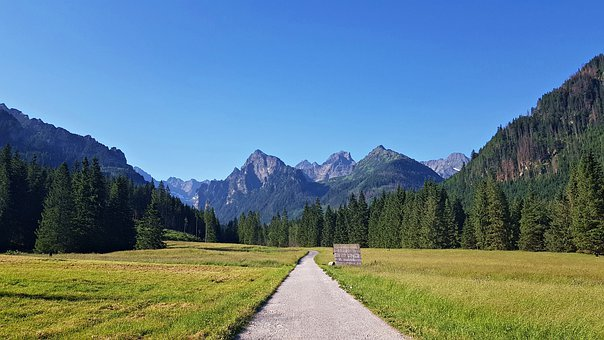 Valley, Road, Mountains, Trees, Field, Meadow, Path
