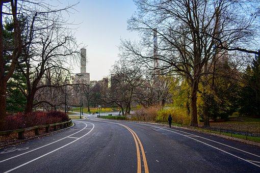 Central Park, Road, City, Urban, Roadway, Pavement