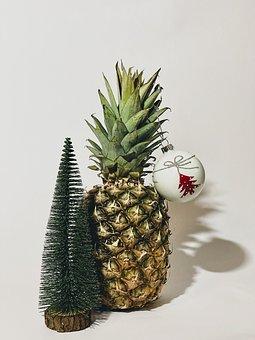 Pineapple, Spruce, Christmas, New Year, Christmas Tree