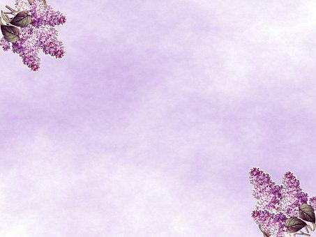 Lilacs, Flowers, Lavender, Purple, Bouquet, Background