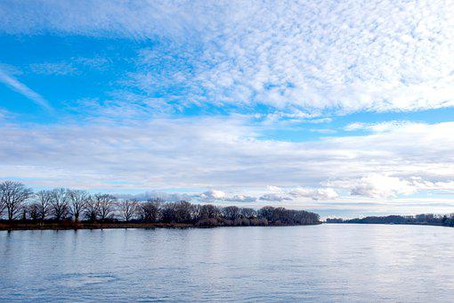 Rhine, River, Clouds, Trees, Bank, River Bank, Water