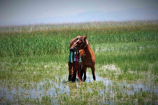 Kayseri, Ardahan, Photographylovers, Nature, Dslrtr