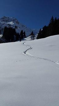 Ski Track, Backcountry Skiiing, Ski, Tour
