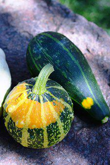 Pumpkin, Pumpkins, Ornamental Pumpkins, Collect, Nature