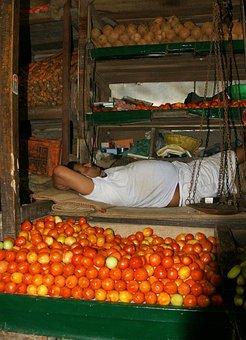 India, Mumbai, Vegetable Market, Fruits, Rest, Sleep