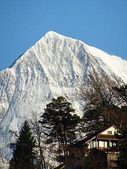 Snow, Alpine, Ausblik, Ski, Ski Area, Mountain