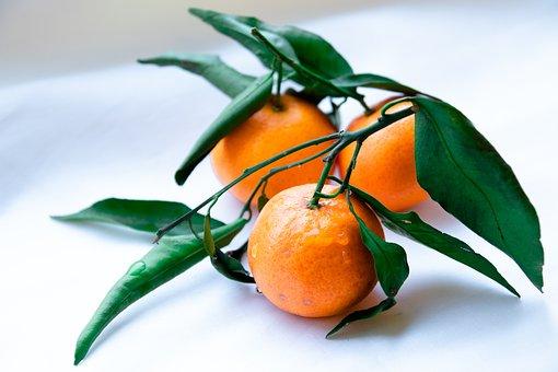 Fruit, Orange, Mandarins, Citrus, Juicy, Organic
