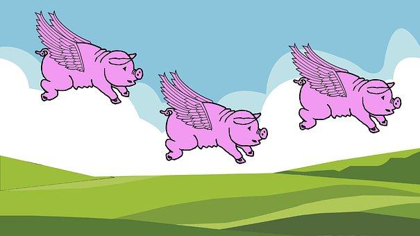 Cartoon, Pigs, Flying, Funny, Wings, Pig, Animal