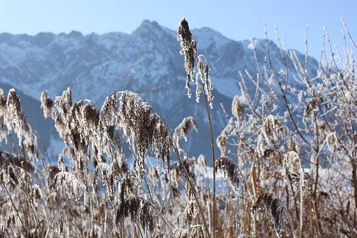 Walchee, Austria, Winter, Lake, Wintry, Landscape, Cold