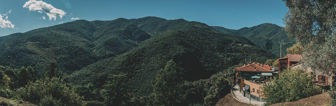 Trees, Forest, Path, Mountains, Walk, Montseny, Hiking