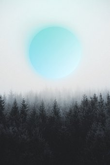 Planet, Trees, Forest, Moon, Nature, Gradient, Abstract