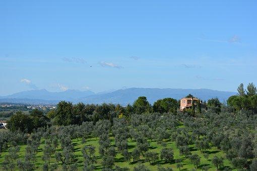 Tuscan Landscape, Tuscany, Italy, Hills, Tourism