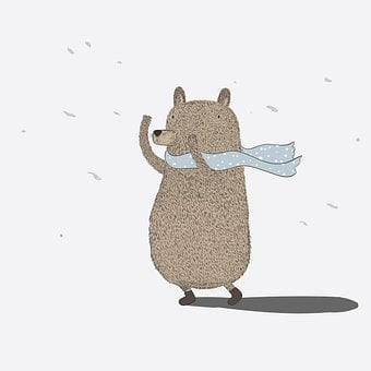 Bear, Scarf, Wind, Storm, Strong Wind, Weather, Animal