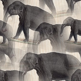 Elephant, Trunk, Animal, Mammal, Seamless, Pattern
