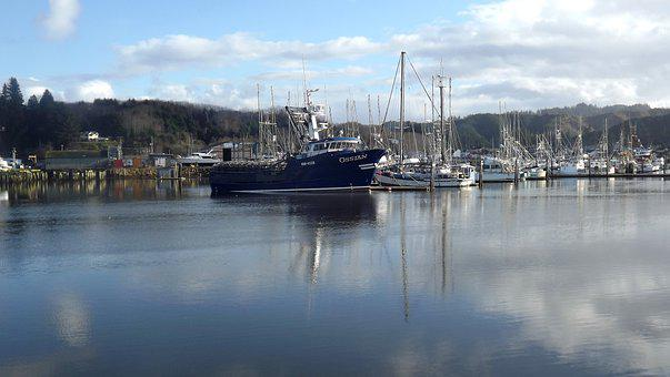 Fishing, Fish, Boat, Harbor, Town, Industry, Reflection