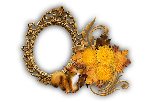 Frame, Squirrel, Flowers, Ornamental, Chrysanthemums