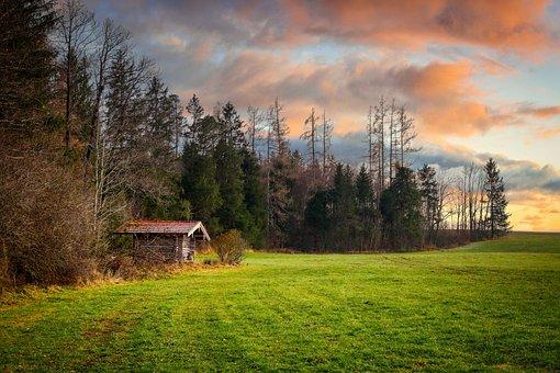 Meadow, Barn, Hut, Log Cabin, Grass, Field, Forest
