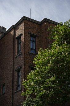 Building, Brick, Windows, Corner, Office, Architectural