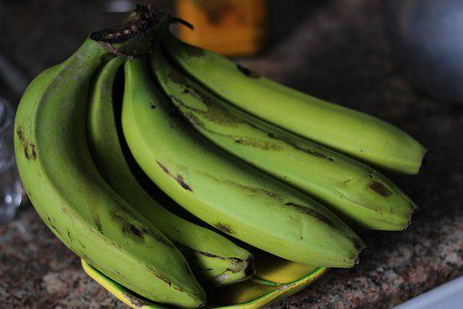 Bananas, Bunch Of Bananas, Green Bananas, Plantains