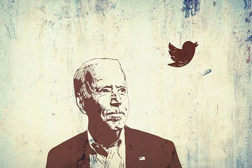 Man, Politician, President, Joe Biden, Government