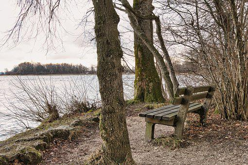Autumn, Winter, Bank, Bench, Resting Place, Seat