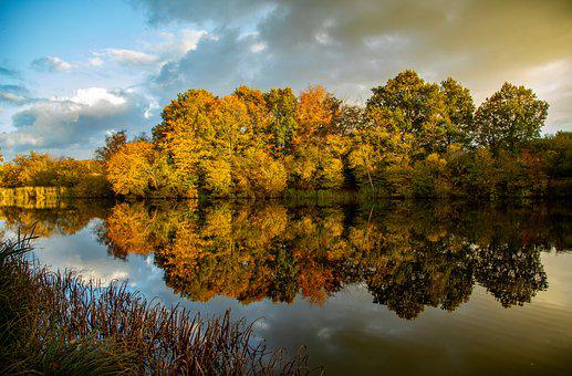 Fall, Autumn, Mirror, Lake, Forest, Nature, Landscape