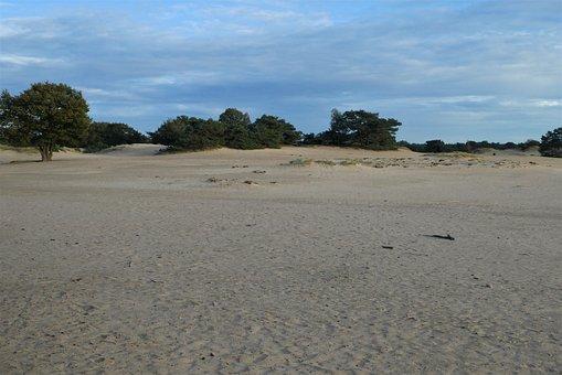Sand Dunes, Aekingerzand, Appelscha, Nature, Landscape