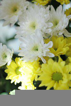 Flowers, Simple, And Meaningful