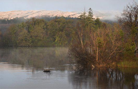 Lake, Winter, Heron, Snow, Nature, Mountain, Cold