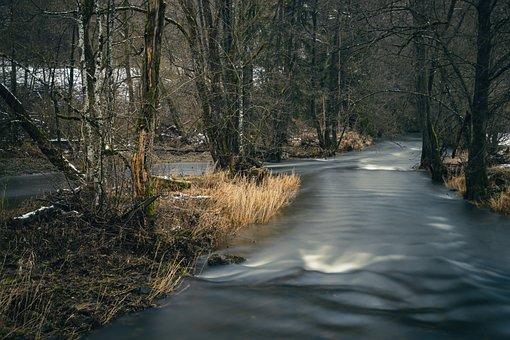 Waters, River, Trees, Flow, Flowing, Flowing Water
