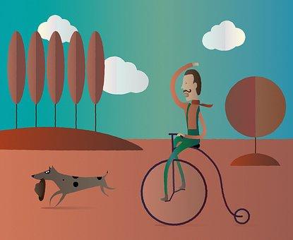 Autumn Walk, Sunny Day, Cyclist, A Walk With A Dog