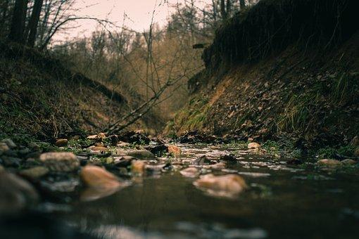 Creek, Rocks, Pebbles, Bank, River, Water, Flowing