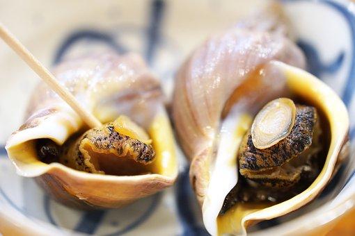 Whelk Shell, Sea Food, Cuisine, Diet, Restaurant, Food