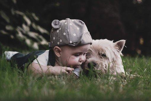 Boy, Dog, Child, Kids, Children, Pet, Animal, Childhood