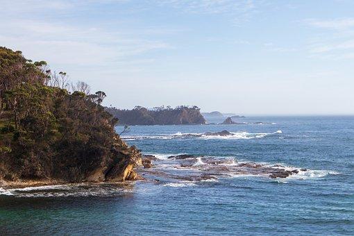Coast, Shore, Beach, Ocean, Forest, Rocks, Waves